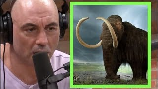 Joe Rogan | Can You Bring Back Extinct Animals?