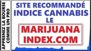 TOUT SUR LE SECTEUR CANNABIS / MARIJUANA INDEX ET LEUR STOCKS. SITE RECOMMANDÉ DANY MURRAY TRADER