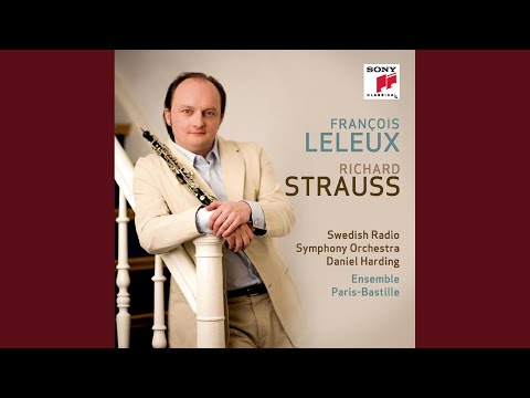 Concerto For Oboe And Small Orchestra In D Major, Op. 144: I. Allegro Moderato