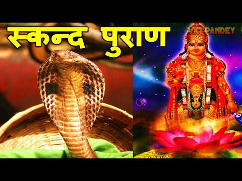 Video - नागपंचमी पूजा | Nag Panchami Puja Vidhi in Hindi | Naga Panchami 2018 | नाग पूजन by Pt Vinod Pandey
