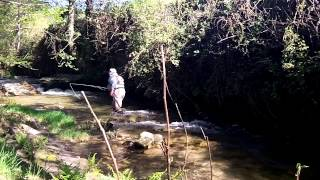 Fishing a small stream  part one