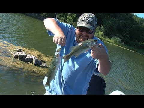Lemont Quarries Large Mouth Bass