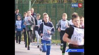 Скачать Всероссийский день бега 15 сентября Кросс нации соберёт на Лыжной базе любителей бега