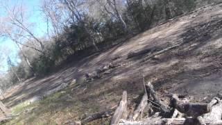 Texas Hog Hunting 2016