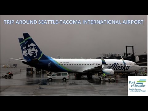 Seattle-Tacoma International Airport Arrivals