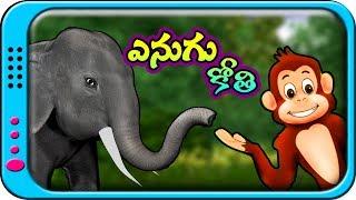 Enugu Kothi - Telugu Stories for Kids | Panchatantra kathalu | Moral Short Story for children
