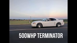 The Best Mustang Ever Made? 2004 Ford Mustang Terminator Cobra Review
