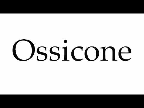 How to Pronounce Ossicone