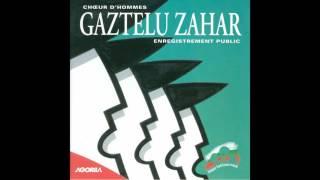 Gaztelu Zahar - Elurra