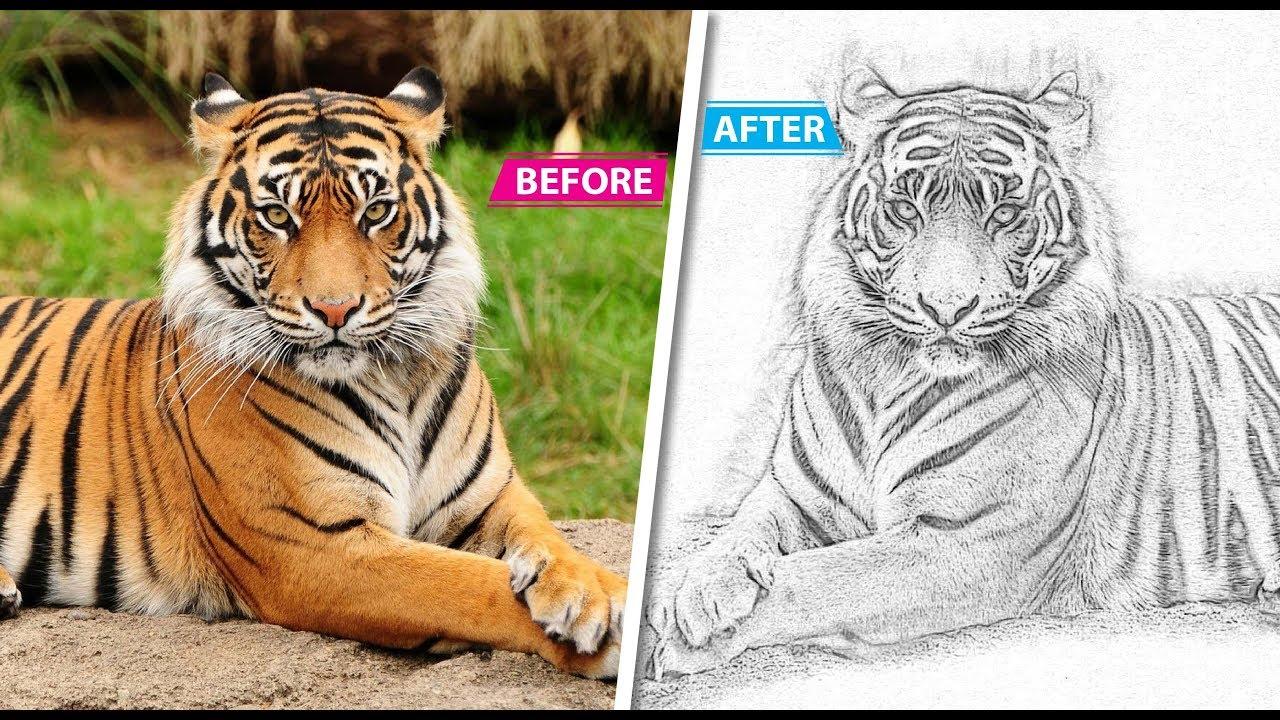 Pencil sketch art photoshop action | Photoshop CS6 | Multi Tech