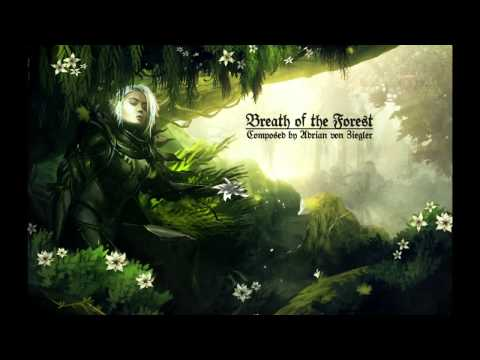 Celtic Music  Breath of the Forest