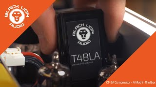 Black Lion Audio // T4BLA Optocell vs Stock Klark Teknik Optocell in a KT-2A Compressor