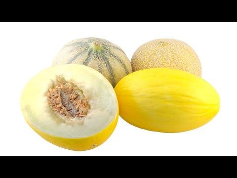 Produção de Melão - Pragas e Doenças