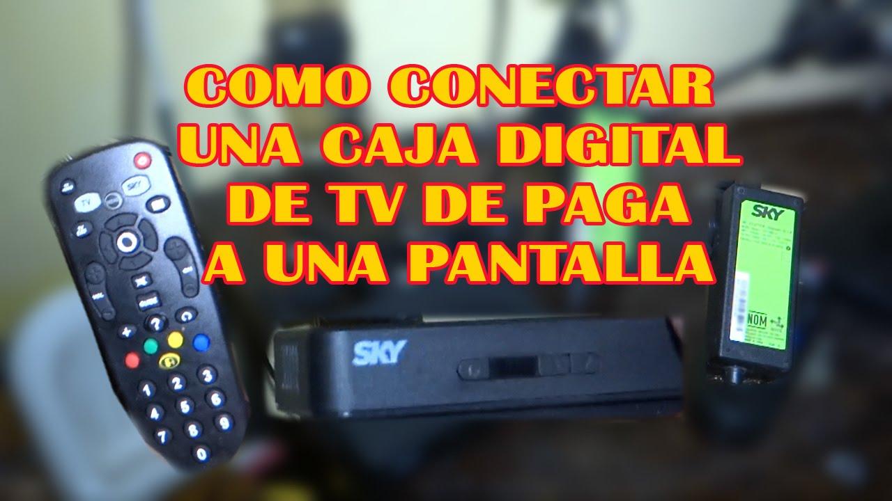 Como Conectar Una Caja Digital De Tv De Paga Vetv Youtube