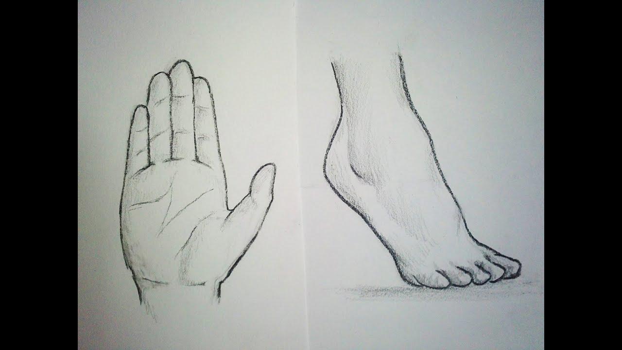 Dessin De Pied Humain comment dessiner des mains & pieds [tutoriel] - youtube