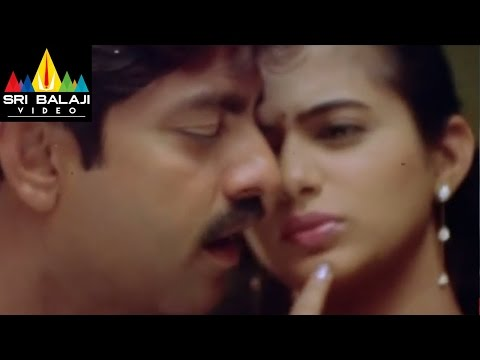 Pellaina Kothalo Songs | Chelivo Video Song | Jagapathi Babu, Priyamani | Sri Balaji Video