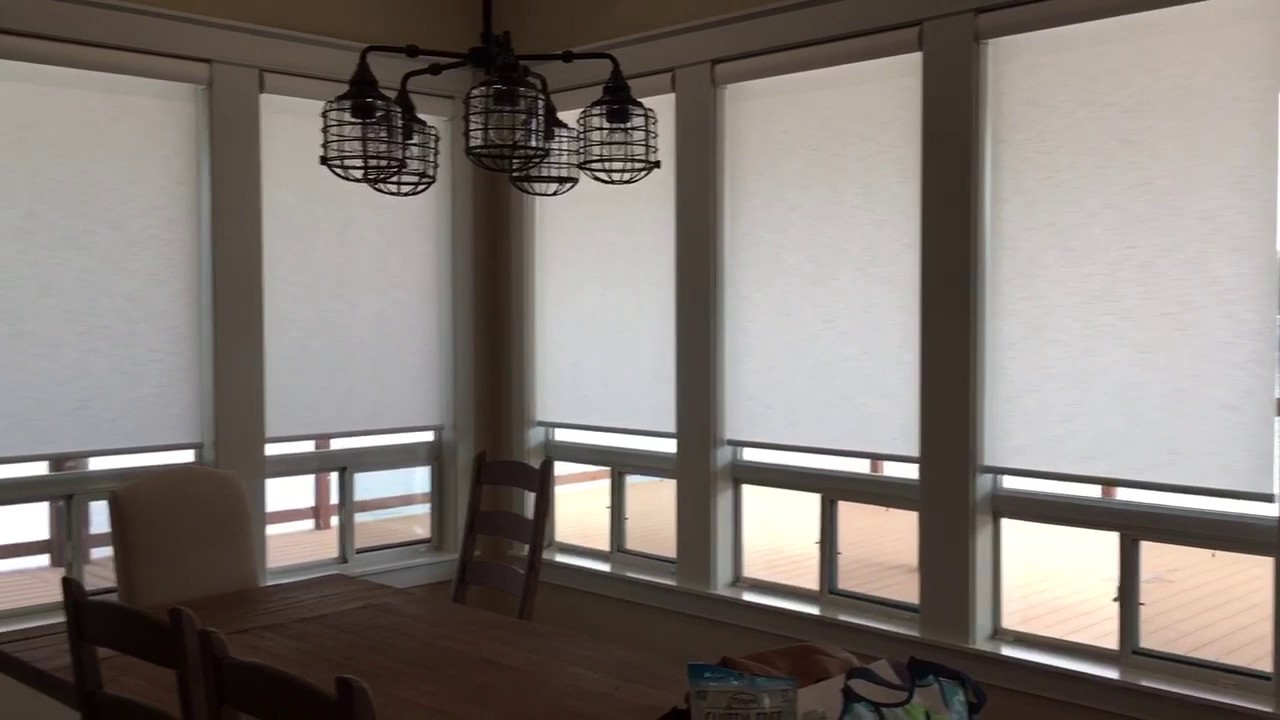 applause barrydowne window blind fabric in paint with by app sudbury blinds lr duolite products detail hunter douglas honeycomb