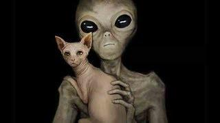 Биороботы пришельцев уже на Земле. Доказательство присутствия НЛО на Земле. Документальный фильм.