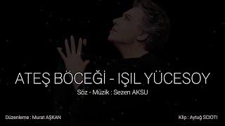 isil Yucesoy - Ates Bocegi   Sezen Aksu Sokagi No 06 Resimi