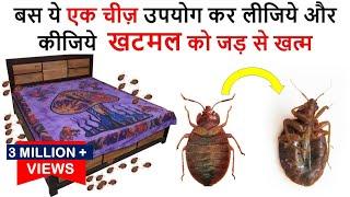 एक ही बार में जड़ से ख़त्म करे खटमल को इस अचूक उपाय से  How To Get Rid of Bed Bugs -bed bugs खटमल