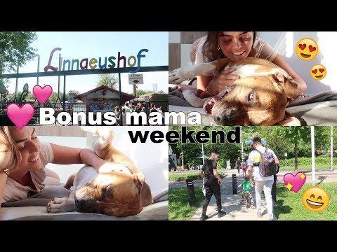 WEEKVLOG #21: BONUS MAMA ZIJN IS ZO LEUK!  Laura Ponticorvo   👨👩👧👦💕🐶