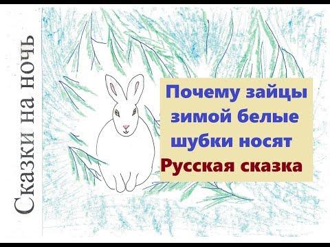 """Русская народная сказка """"Почему зайцы зимой белые шубки носят"""""""