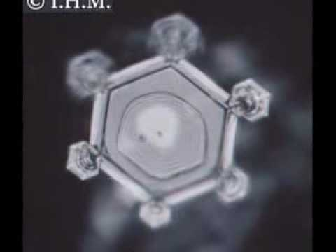 Positive & Negative Energy Effects on Water Crystals