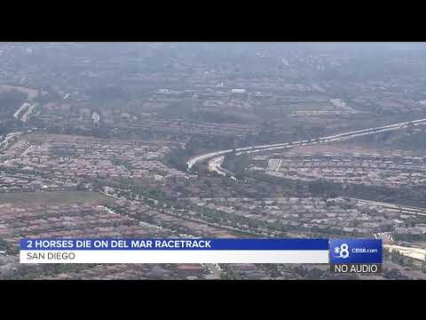 Watch Live: Two Horses Die In Collision On Del Mar Racetrack