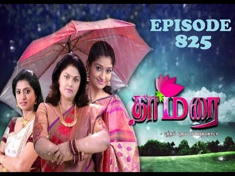 THAMARAI EPISODE 825 - 29/7/2017