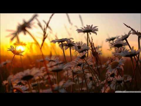 เพลงดอกไมในแจกัน  โปรแกรมวิชาภาษาไทย มรภ.กพ.