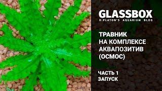 "1 - Травник на комплексе ""Аквапозитив"" (ОСМОС) - запуск"