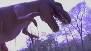 Dinosaur Moonwalk Slide in Houston - Sky High Party Rentals - Moonwalks in Houston