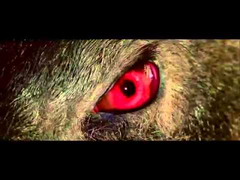 Dididi [Hài hước] Trailer Tây du ký: Mối tình ngoại truyện Journey to the West