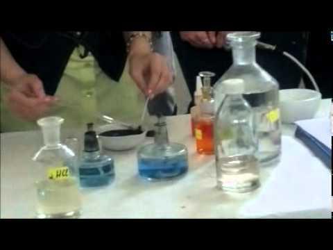 PGHHT Pazardzhik - Chemistry Day