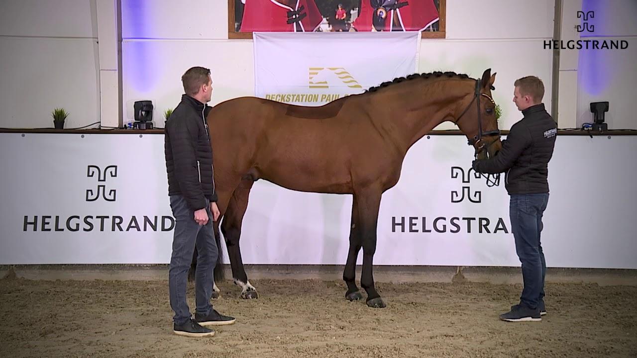 Valverde et Springbank II VH vendus par Andreas Helgtrand