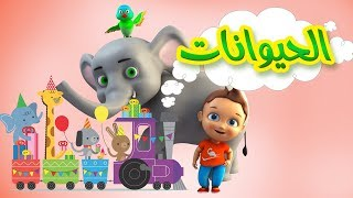 Download Video كليب الحيوانات -  animals | قناة كراميش الفضائية Karameesh Tv MP3 3GP MP4