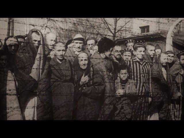 Доказательства зверств нацистов: корреспондент RT получил доступ к документам об Освенциме