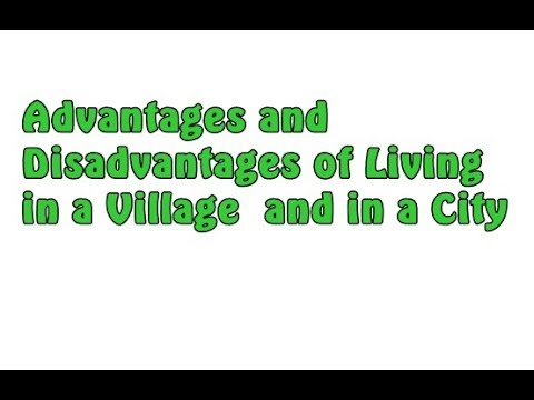 advantages and disadvantages of village
