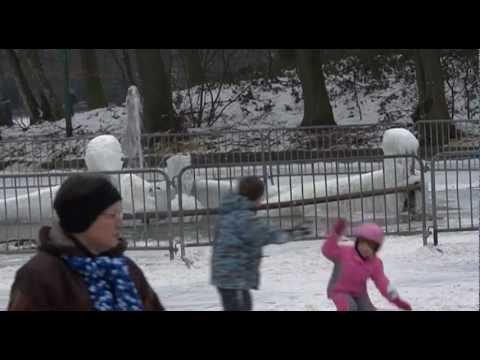 IJspret schaatsen kasteel en vijver Stein februari 2012