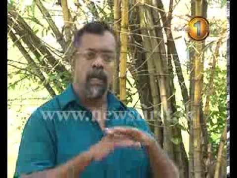 Newsfirst Sinhala Tamil New Year - 1