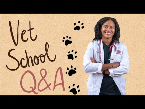 veterinary-school,-sgu,-&-grenada-q&a-|-timestamps-added