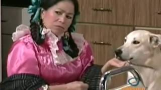 Ay maria que punteria Audio Original