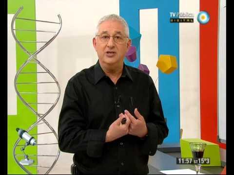 Científicos Industria Argentina - 29-06-13 - Planteo matemático