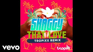 Shaggy That Love Tropixx Remix Audio
