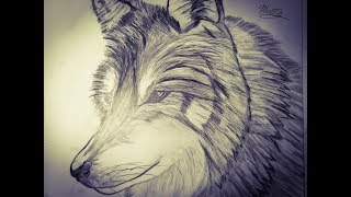 Drawing of a Galaxy Wolf YouTube