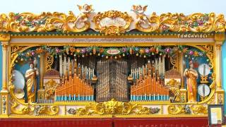 Donauwellen - Gavioli 98 Key `White`s Gavioli`
