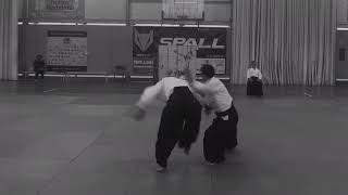 Curso de Aikido a cargo de Yasunari Kitaura Shihan y Shu Kitaura Sensei, Mataró 2018