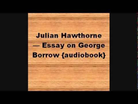 essays on hawthorne