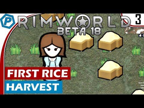 RimWorld Beta 18   Time for food, Rice Harvest   Lets Play RimWorld   #3