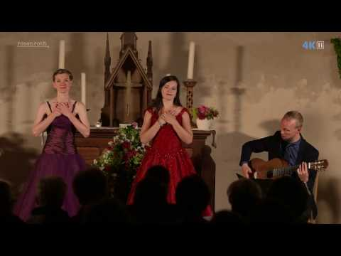 rosenroth - Anna Moritz - Inga Philipp - Hagen Muster